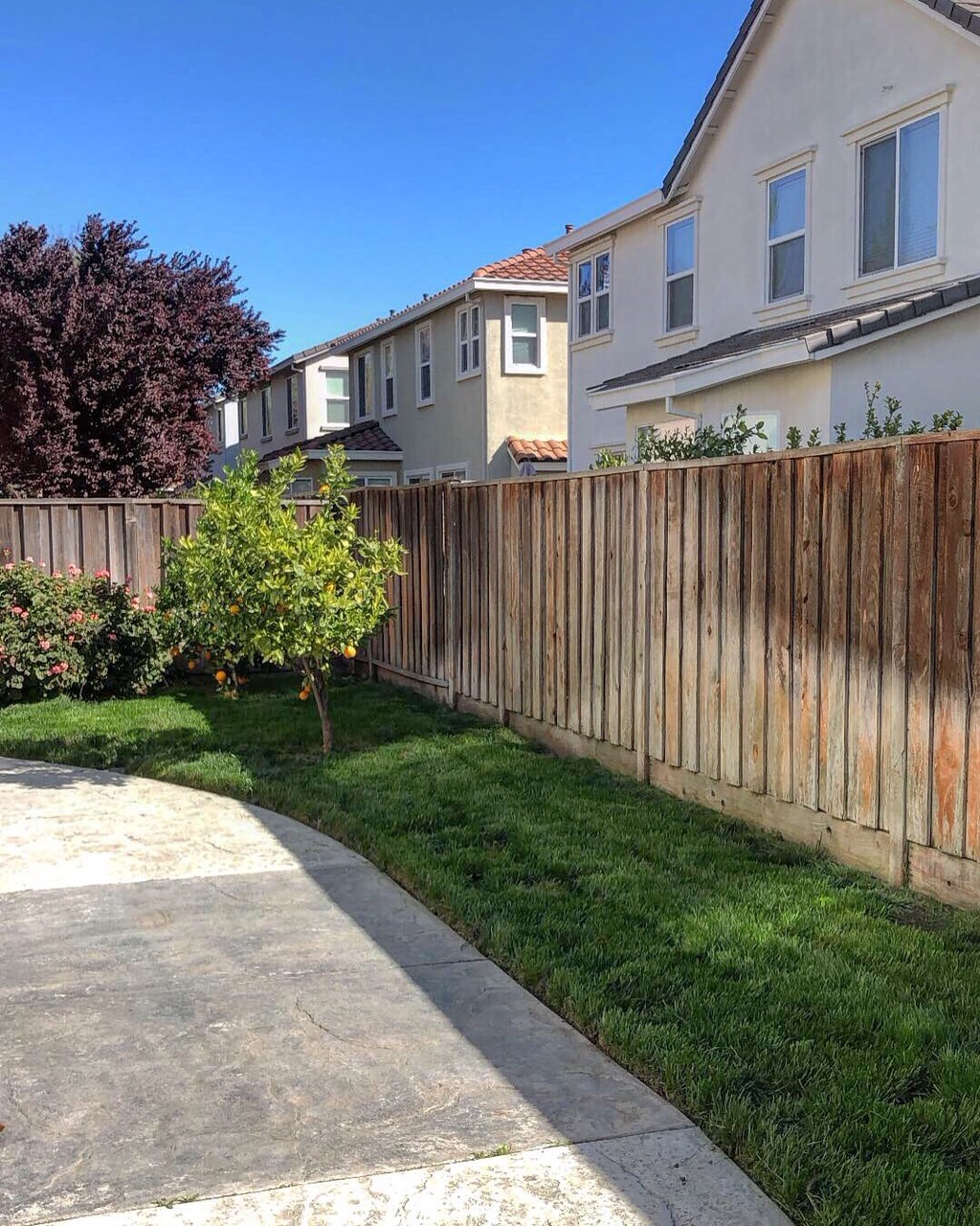 Stockton Lawn Care Service Leaves Yards Looking Great